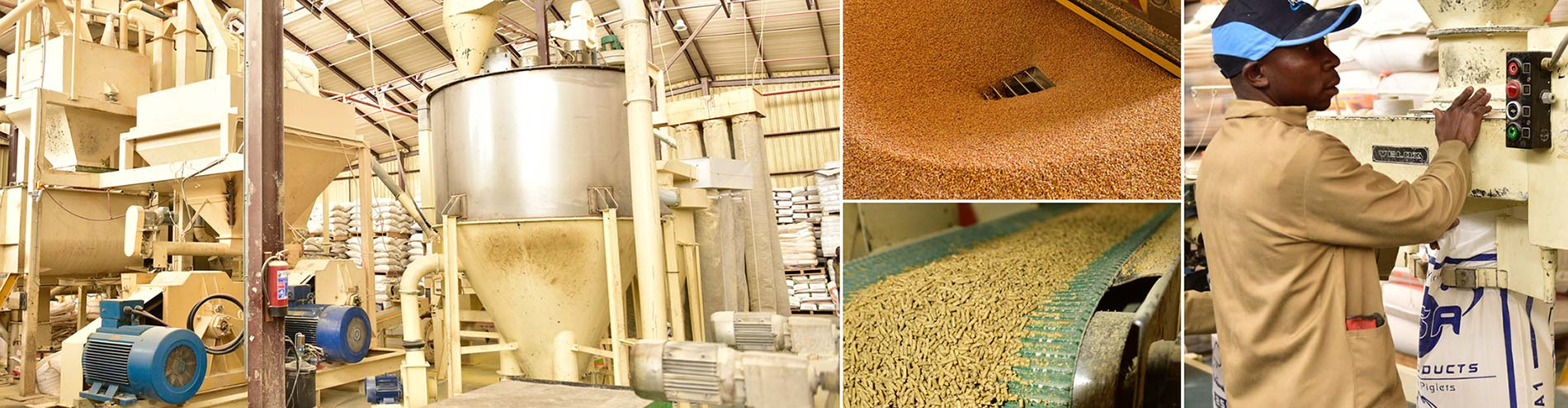 Manufacturer & Supplier of Quality Feeds
